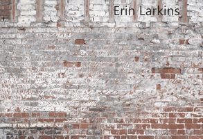 Katebackdrop£ºKate Faded Retro Brick Backdrop for Photography Designed by Erin Larkins