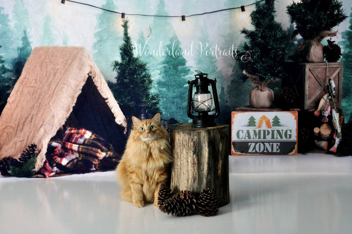 Katebackdrop:Kate Forest Camping Tent and Lamp Children Summer Backdrop for Photography Designed by Megan Leigh Photography