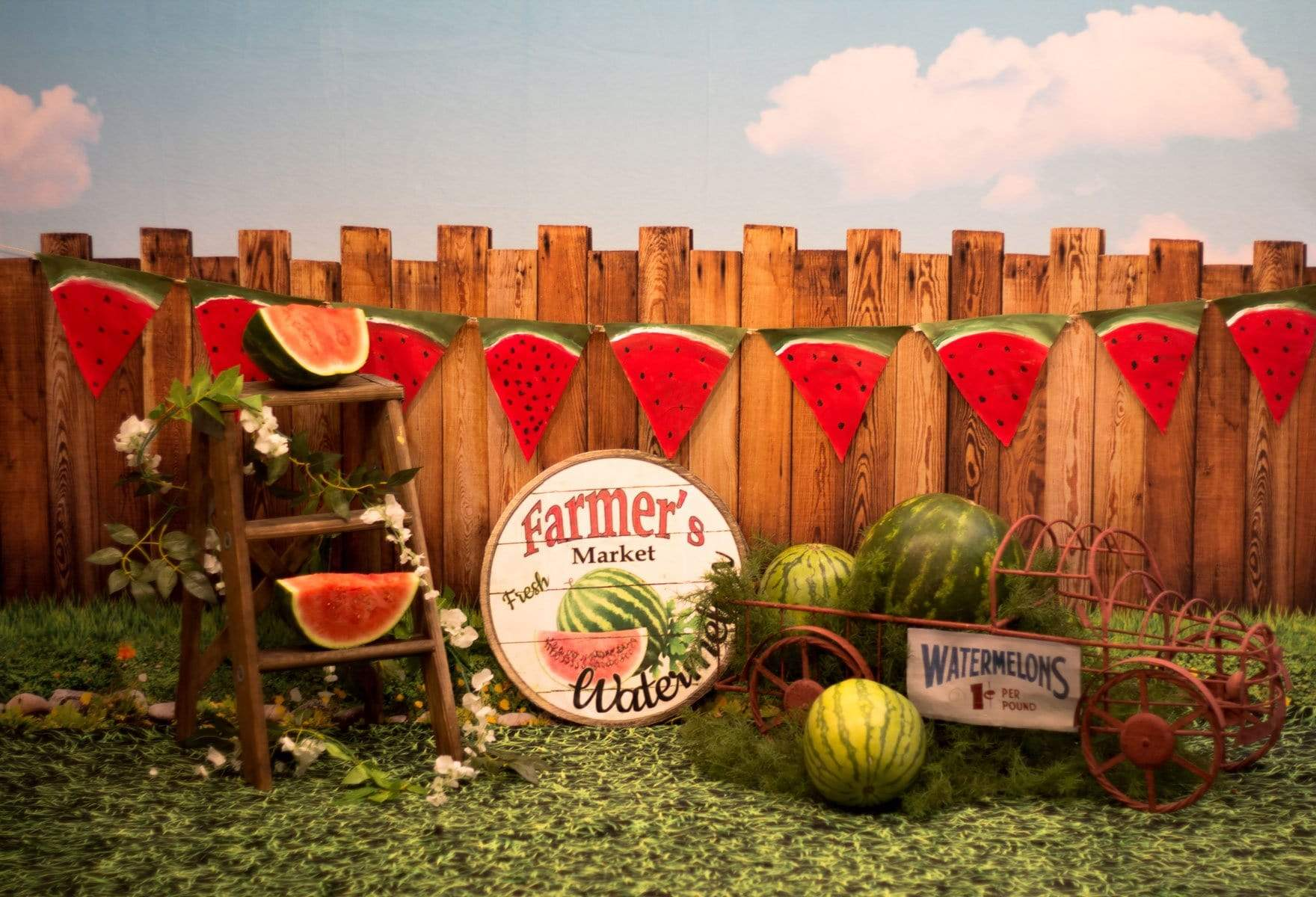 Load image into Gallery viewer, Katebackdrop:Kate Sunset Fence With Watermelons Children Backdrop for Photography Designed by Stephanie Gabbard