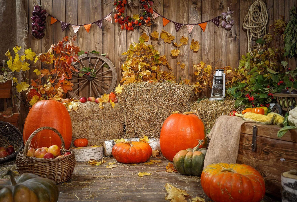 Katebackdrop:Kate Autumn Harvest Thanksgiving Pumpkins Backdrop for Photography