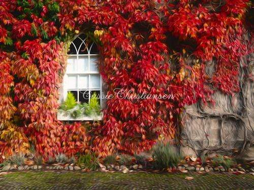 Katebackdrop:Kate Fall Red Maple Leaf with Window Backdrop Designed by Cassie Christiansen Photography