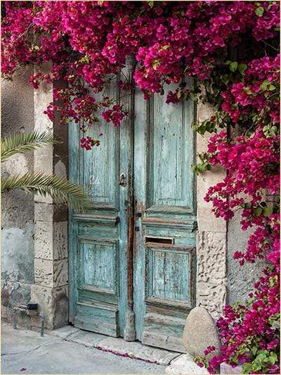 Katebackdrop Kate Blue Wooden Door red Floral Scenery Concrete Backdrops