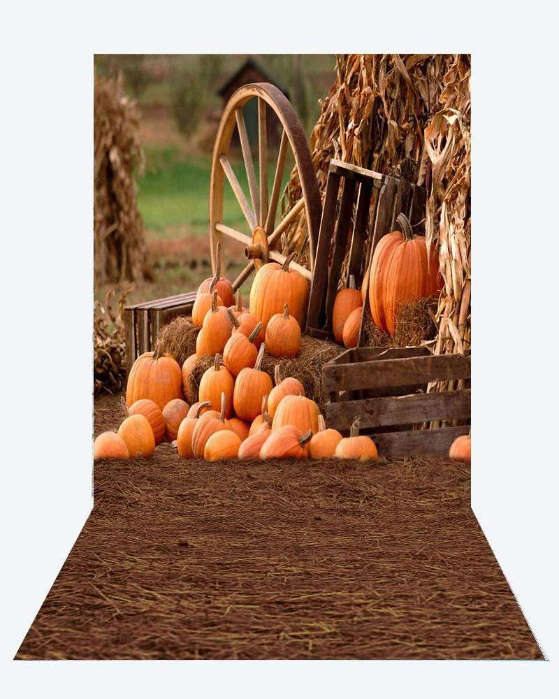 Katebackdrop¡êoKate Fall Pumpkin farm Backdrops+Kate Haystack floor mat