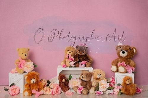 Kate Girly Bear Backdrop for Photography Designed by Jenna Onyia