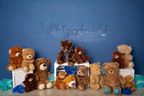 Kate Manly Bear Backdrop for Photography Designed by Jenna Onyia