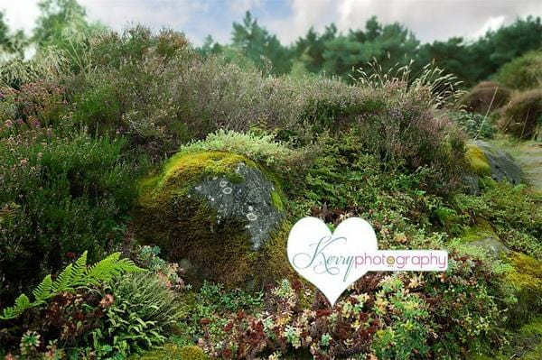 Kate Fairy Flower Rock Woodland with Greenery Backdrop Designed by Kerry Anderson