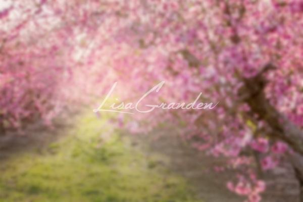 Kate Spring Pink Flowers Backdrop for Photography Designed by Lisa Granden