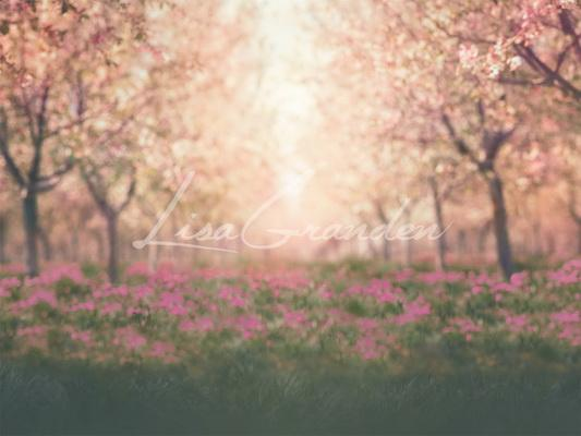 Kate Spring Cherry Blossoms Orchard Backdrop for Photography Designed by Lisa Granden