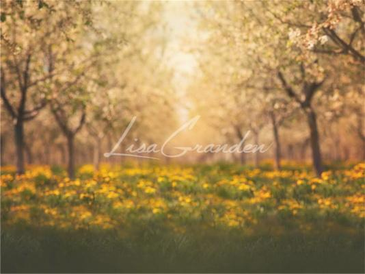 Kate Springtime Orchard in Yellow Backdrop for Photography Designed by Lisa Granden