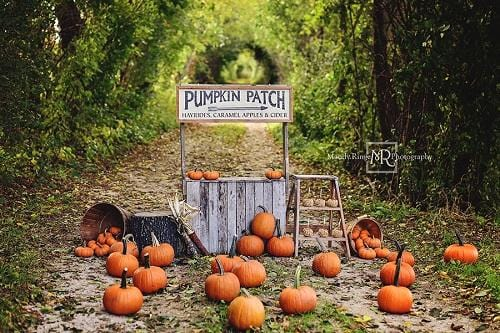 Kate Autumn/Thanksgiving Backdrop Pumpkin Stand Designed by Mandy Ringe Photography