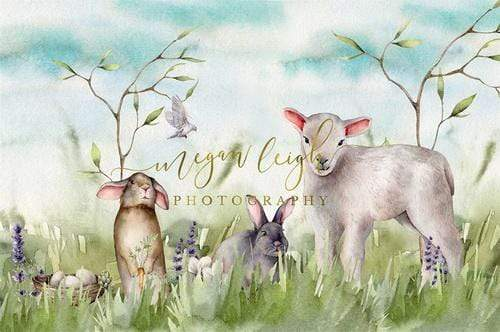 Katebackdrop:Kate Spring Nature Field Easter Backdrop Designed by Megan Leigh Photography