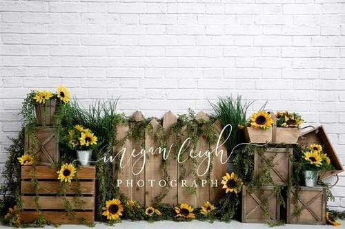 Kate Spring Sunflower White Brick Backdrop Designed By Megan Leigh Photography