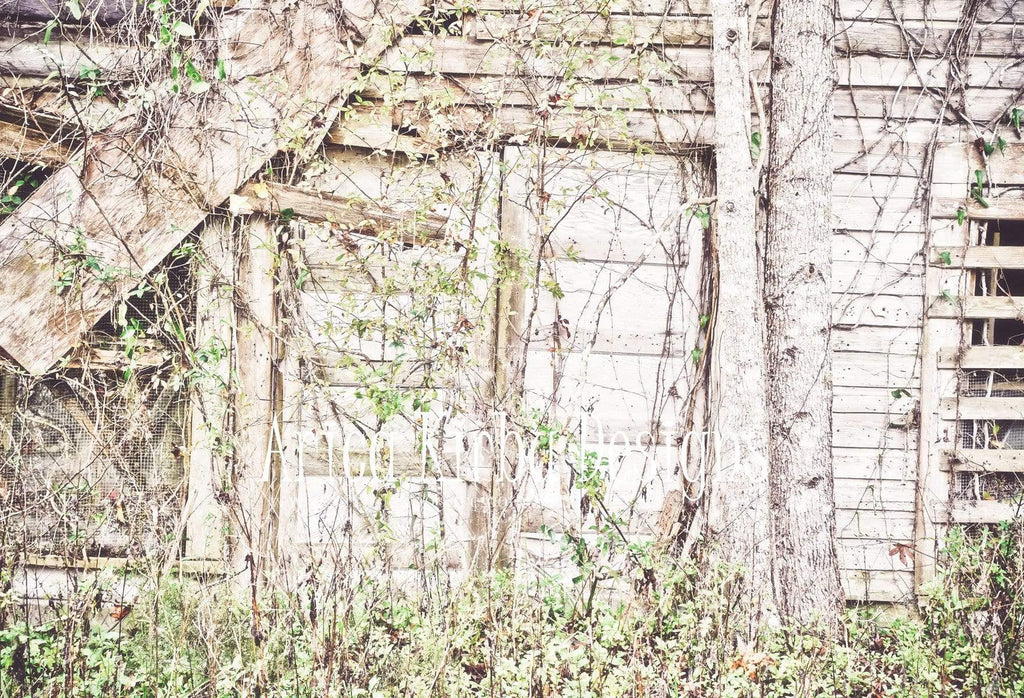 Katebackdrop:Kate Overgrown Doors White Backdrop Designed by Arica Kirby