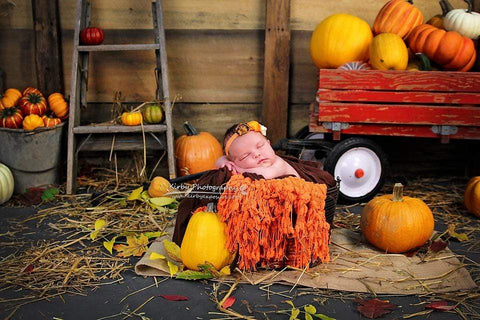 Kate Pumpkin Harvest Backdrop Autumn and Halloween designed by Arica Kirby