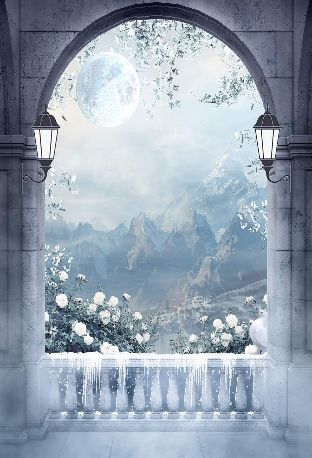 Load image into Gallery viewer, Katebackdrop£ºKate Winter Mountain And Moon Arched Door with Snow Backdrop Designed by JFCC