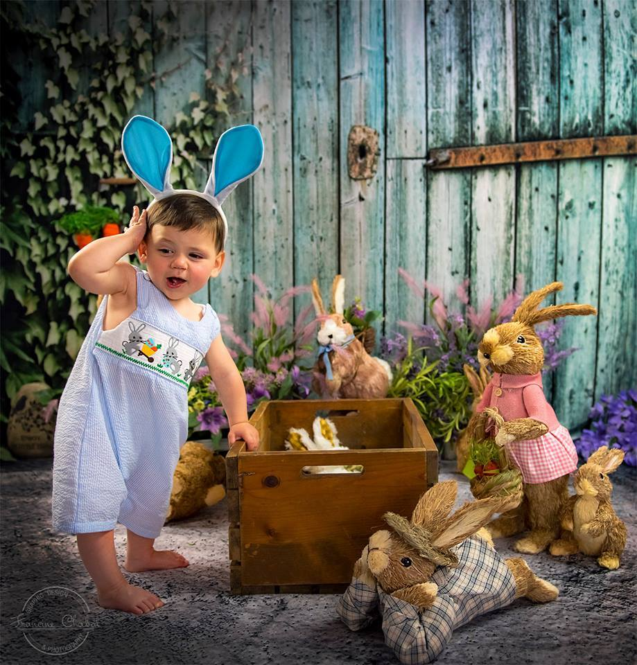 Load image into Gallery viewer, Kate Old Barn Door Spring Backdrop for Children Photography - Katebackdrop