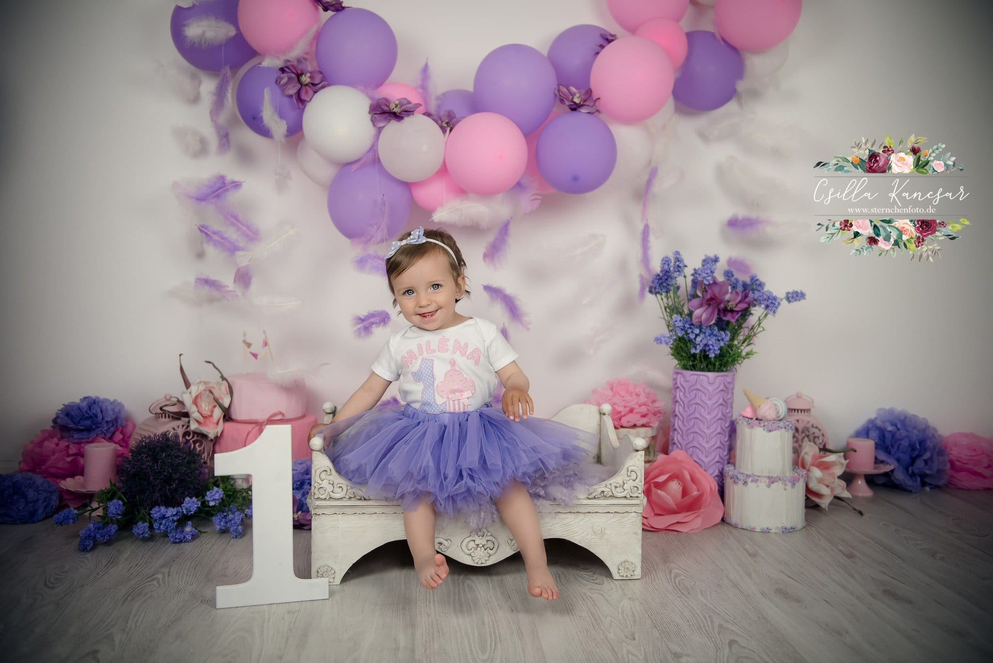 Birthday Party Cake Smash Pink Balloons Photography Backdrop Blue Purple
