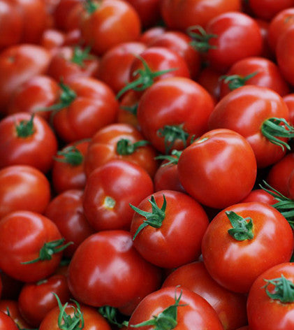 tomatoes images