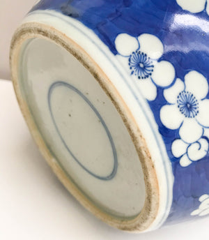 Lovely Blue & White Porcelain Covered Ginger Jar Decorated With Plum Tree Flowers. Circa 1900 Chinese