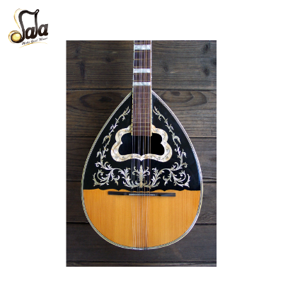 Types of Bouzouki Instruments