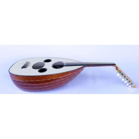 productos / professional-arabic-electric-oud-aaok-301g-certificated-lavta-ouds-sala-muzik-string-instrument-plucked_616.jpg