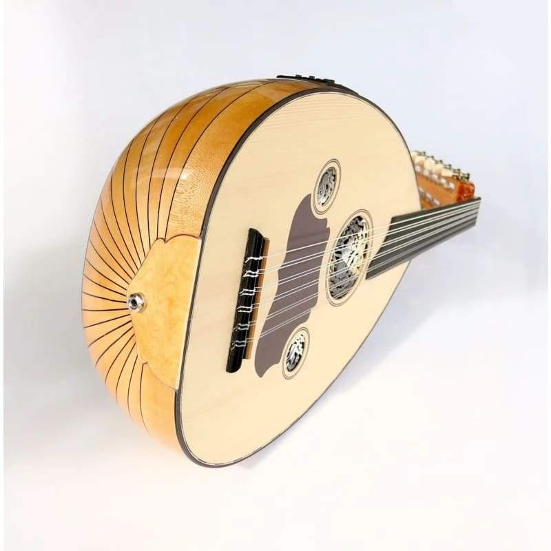 Professional Turkish Electric Oud AOK-206G - Ouds