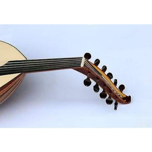 Oud-Instrument