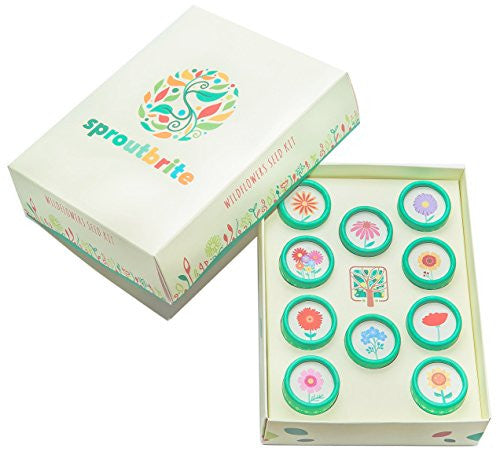 Sproutbrite Wildflowers Seed Kit For Home Gardening Including Easy To Grow  Varieties In A Colorful Gift Style Box