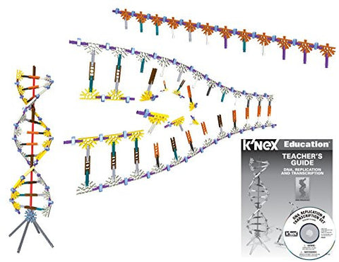 K'NEX Education - DNA Replication and Transcription Set - 525 Pieces - Ages 10+ Science Educational Toy