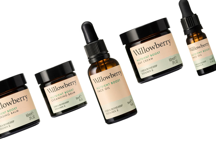 Willowberry's brand new look