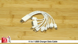 11 in 1 CHARGING Cable