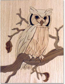 """Owl"" Marquetry Kit"