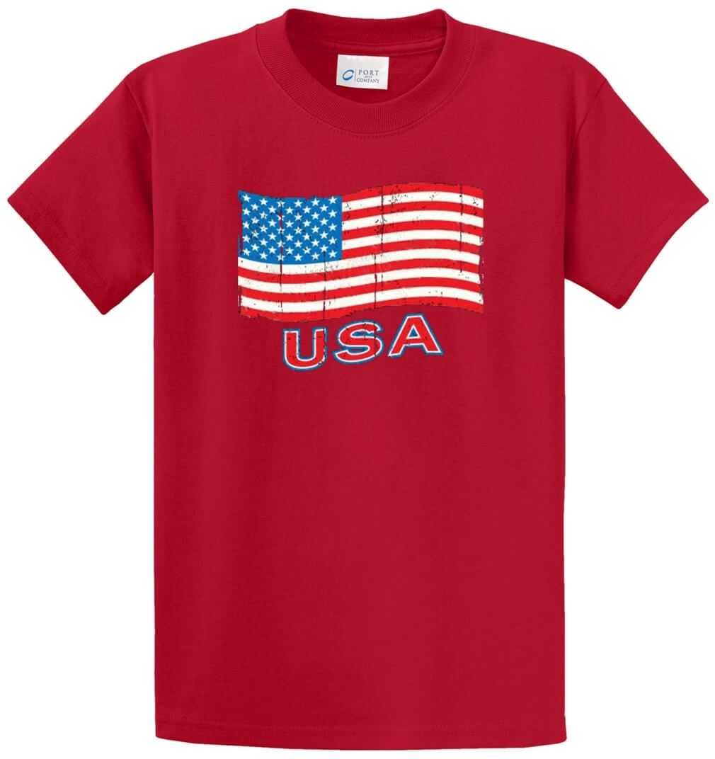 Usa Flag Printed Tee Shirt-1