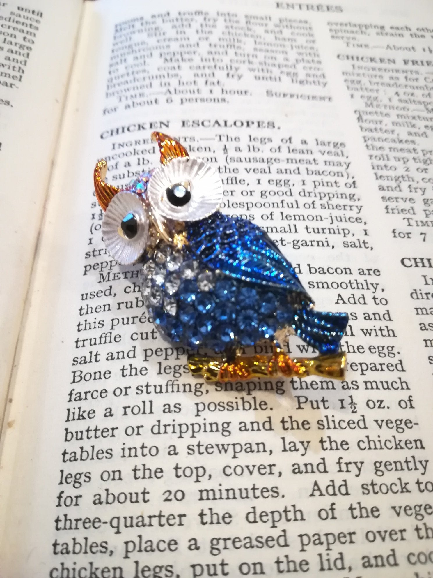 wise old owl brooch