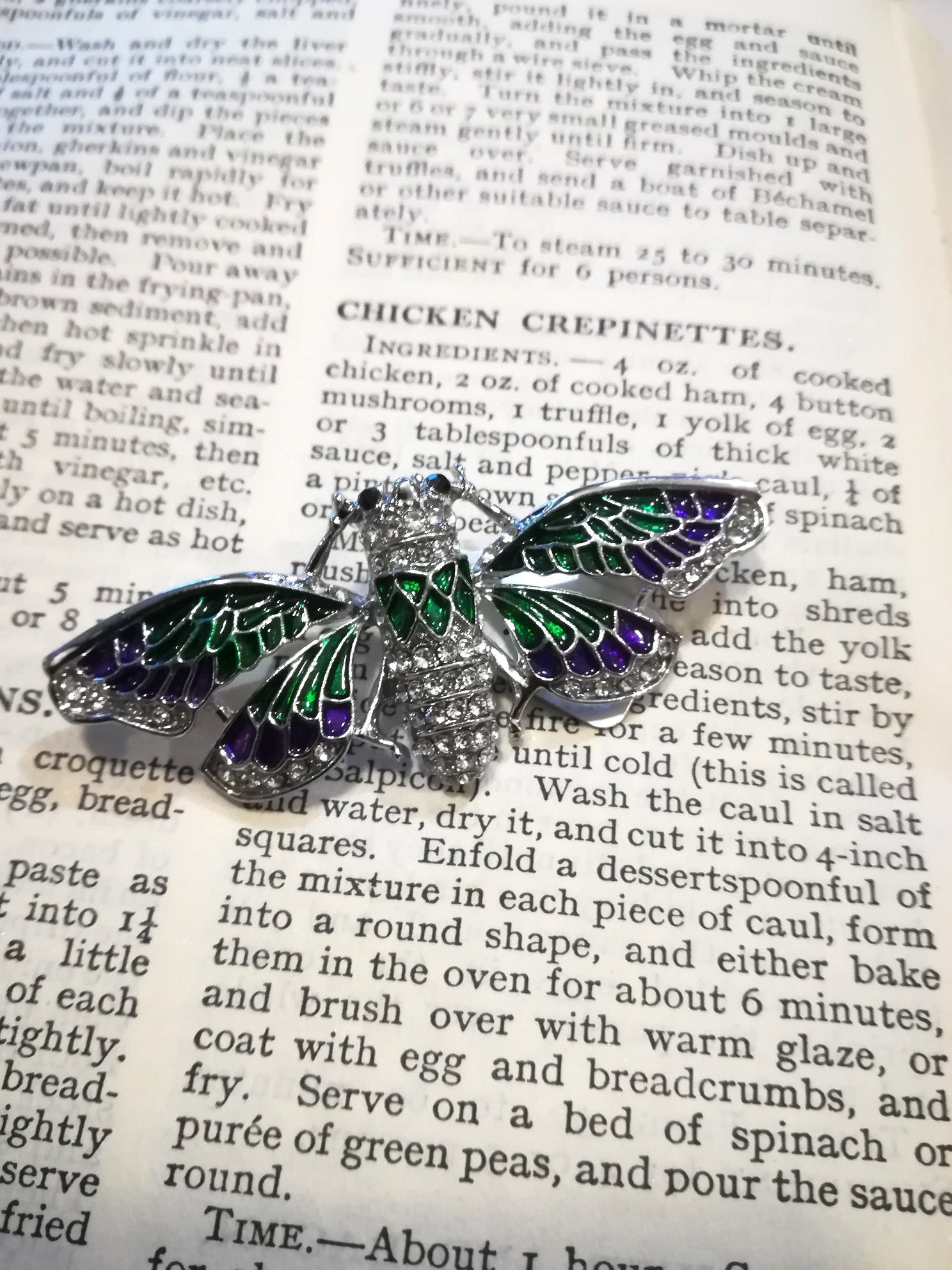 dragon fly brooch green and purple