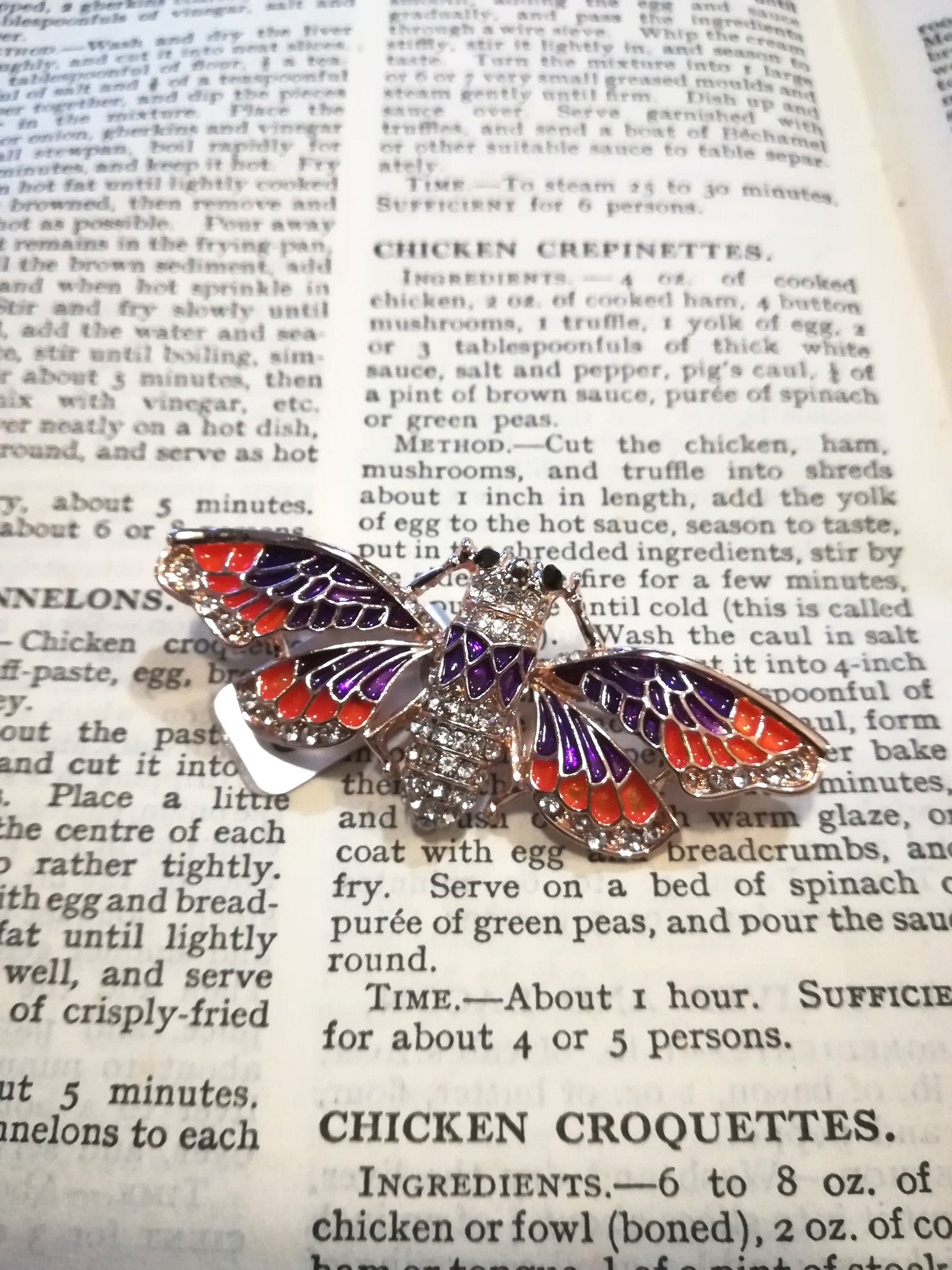 dragon fly brooch orange and purple