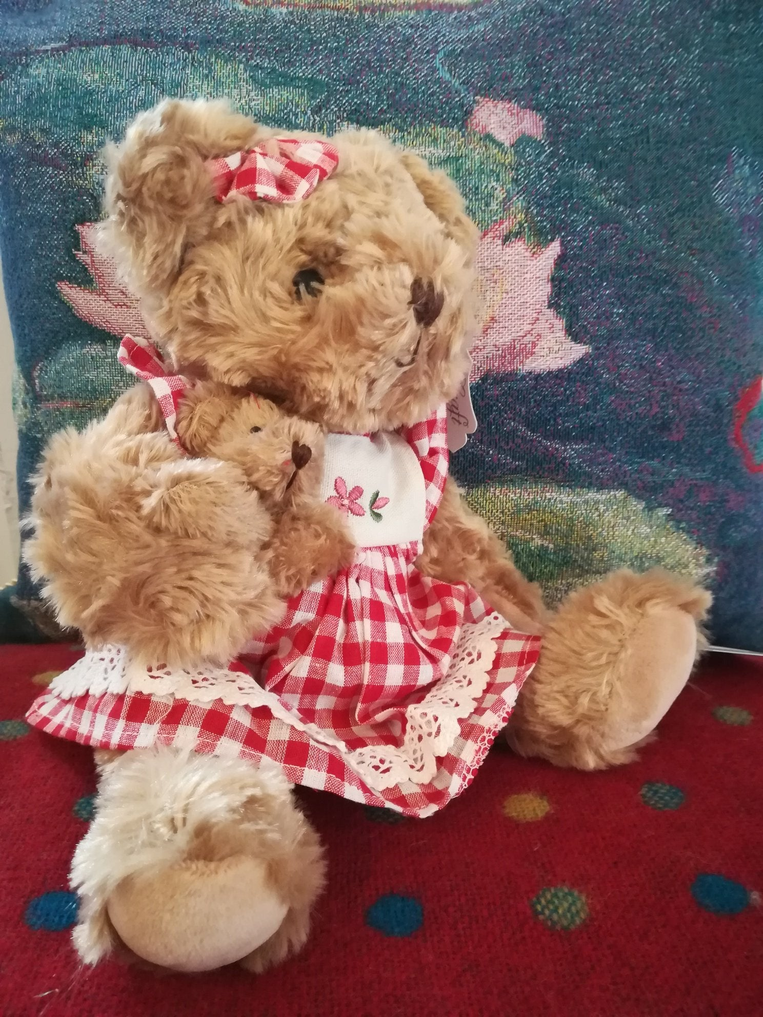 Teddy in red gingham dress