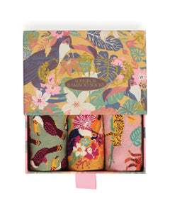 Toucan Ladies sock gift box