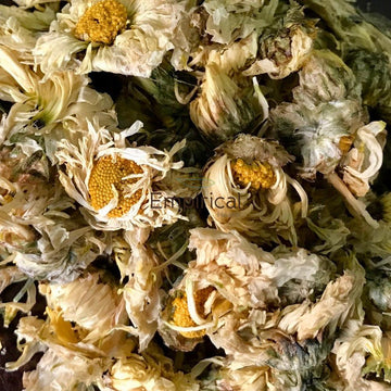 Ju Hua (Sun-dried) (AAA) - Flos Chrysanthemi