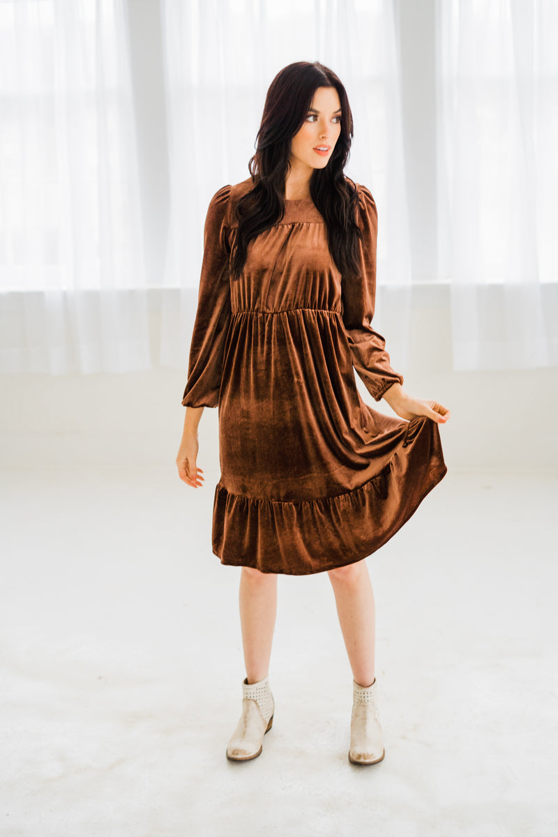 Lux Cocoa Velvet Dress