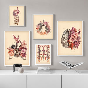 Vintage Lung Skull Spine Human Anatomy Medicine Wall Art Canvas Painting Nordic Posters And Prints Wall Pictures For Living Room