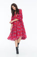JENNA HIPP DRESS LITTLE PAISLEY RED