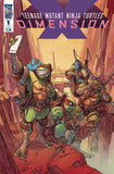TMNT DIMENSION X #1 - Kings Comics