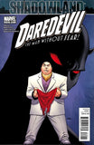 DAREDEVIL VOL 2 #510 SL - Kings Comics
