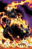 INFINITY WARS GHOST PANTHER #1