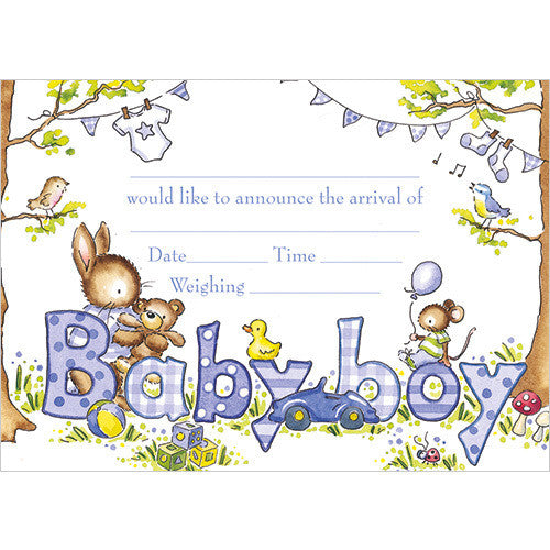 Baby Boy Arrival (Pack of 10 note cards)
