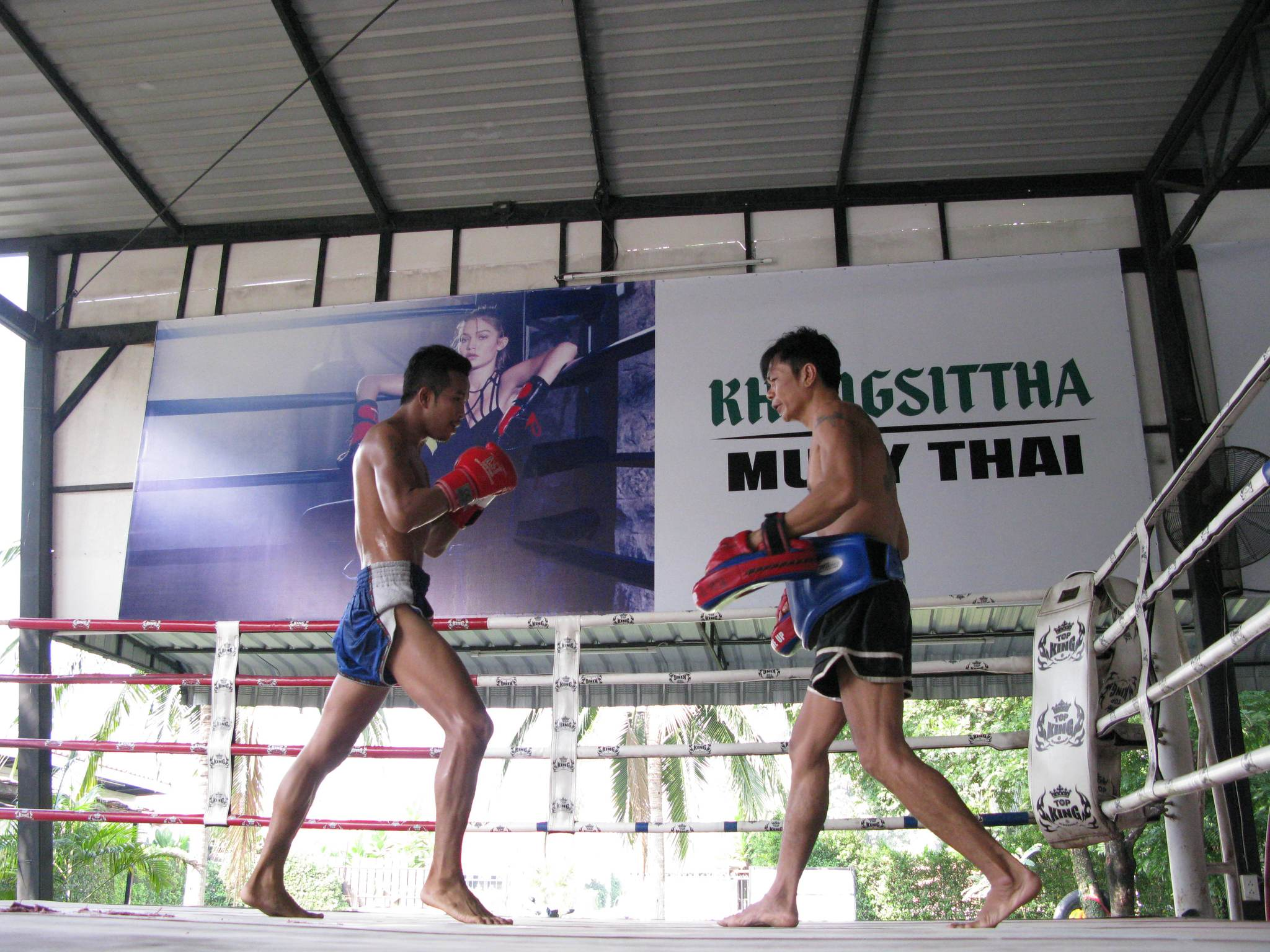 The Best Times to Travel to Thailand for Muay Thai