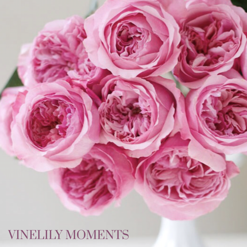 Spring Garden Roses - VineLily Moments