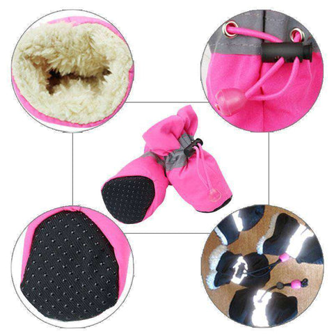 Chaussons antidérapant pour chien -  - Lovely bouledogue
