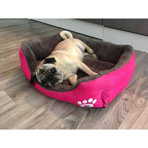 Image of Panier super moelleux -  - Lovely bouledogue